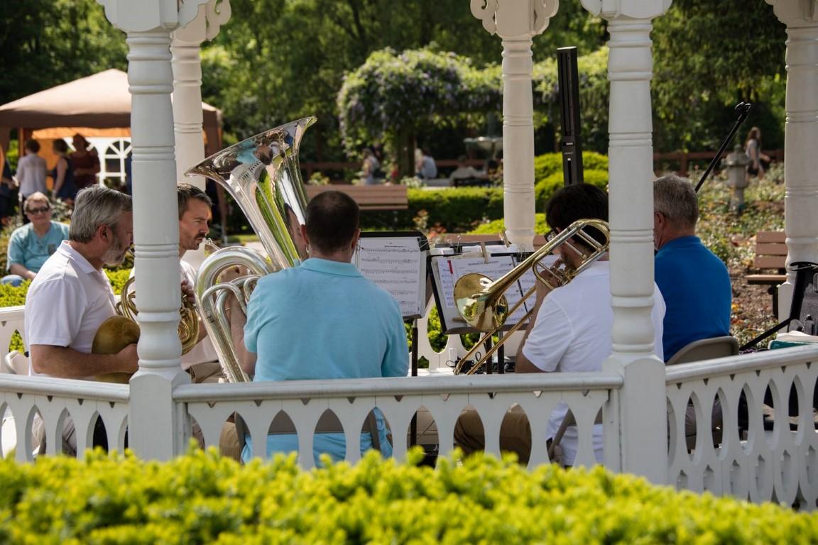 Band in Gazebo